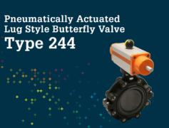Butterfly Valve Type 244